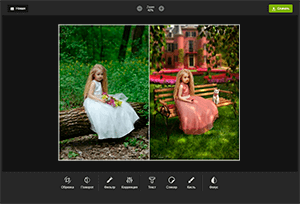 Photo Editor Online Mini<br><br>All the tools for photo editing and nothing more!