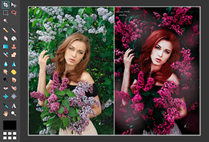 Photo Editor Online Old<br>(Classic version)<br><br>An old but still popular editor.<br>(Requires Flash)